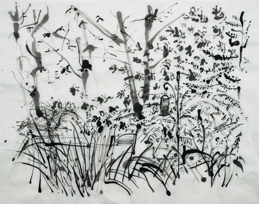 Back Garden, Chinese Ink on rice paper - drawing by Jo Dunn