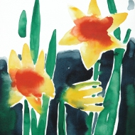 Daffodils, 1984
