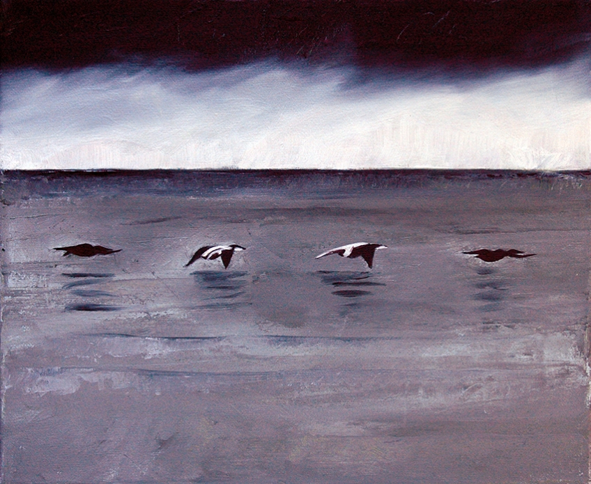 Eiders in Flight, oil painting by Jo Dunn, 2012