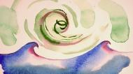 Spiral - waves, 2008