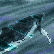 Whale 1, 2008