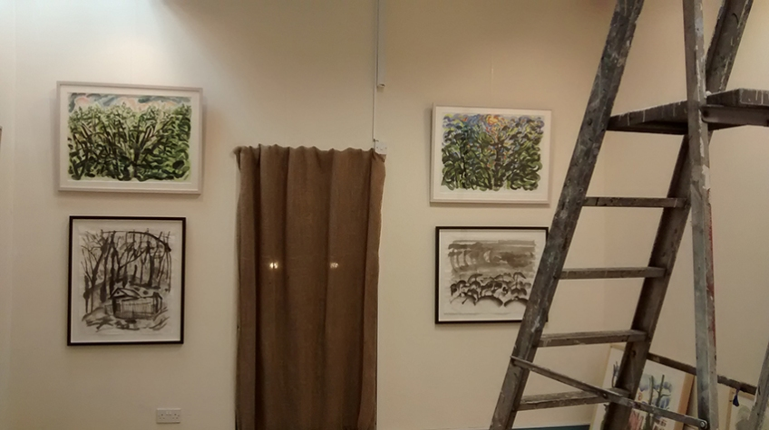 Bobo Art Gallery - View with step-ladders