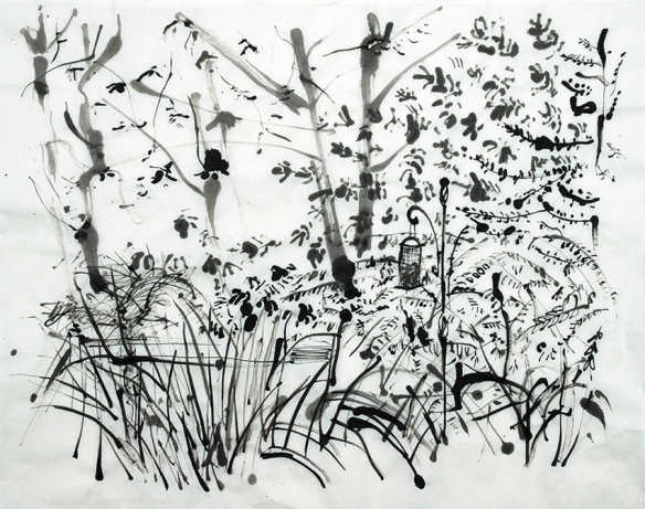 Back Garden, ink drawing