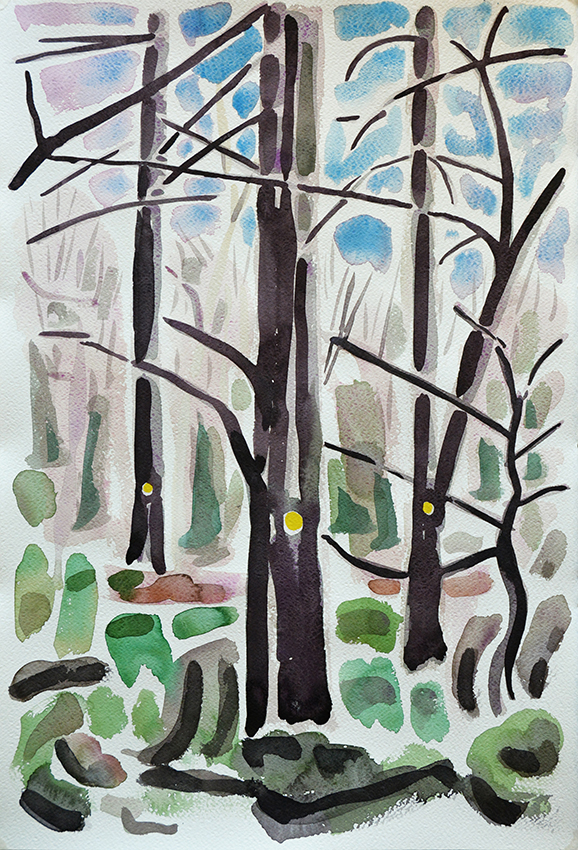 Yellow dot on trees in Gledhow Valley Woods January 2015