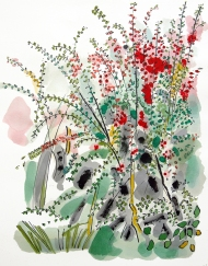 Corner of the Garden, watercolour and ink drawing by Jo Dunn 2010