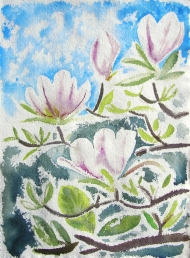Magnolias, watercolour painting by Jo Dunn, 2011