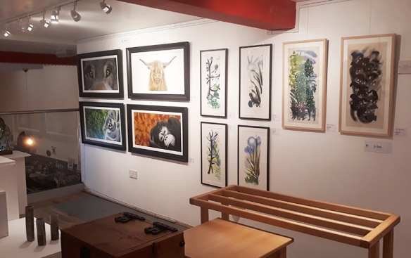 Roundhay Artists at Fabrication Crafts, Leeds - including paintings by Jo Dunn and Heidi Farrer