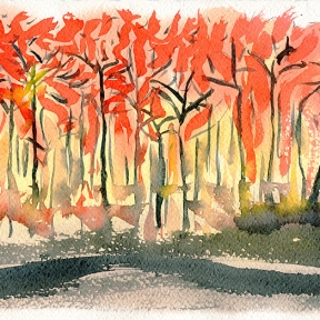 Australian bushfires in New South Wales - watercolour painting by Jo Dunn 2020