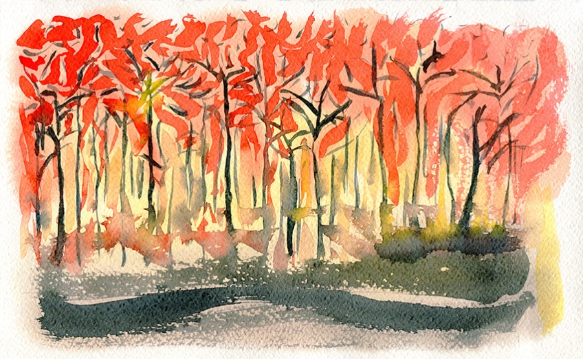 Australian bushfires in New South Wales - watercolour painting by Jo Dunn 2020