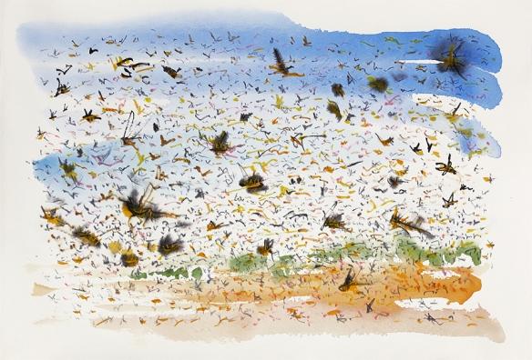 Jo Dunn - Plague of Locusts 3