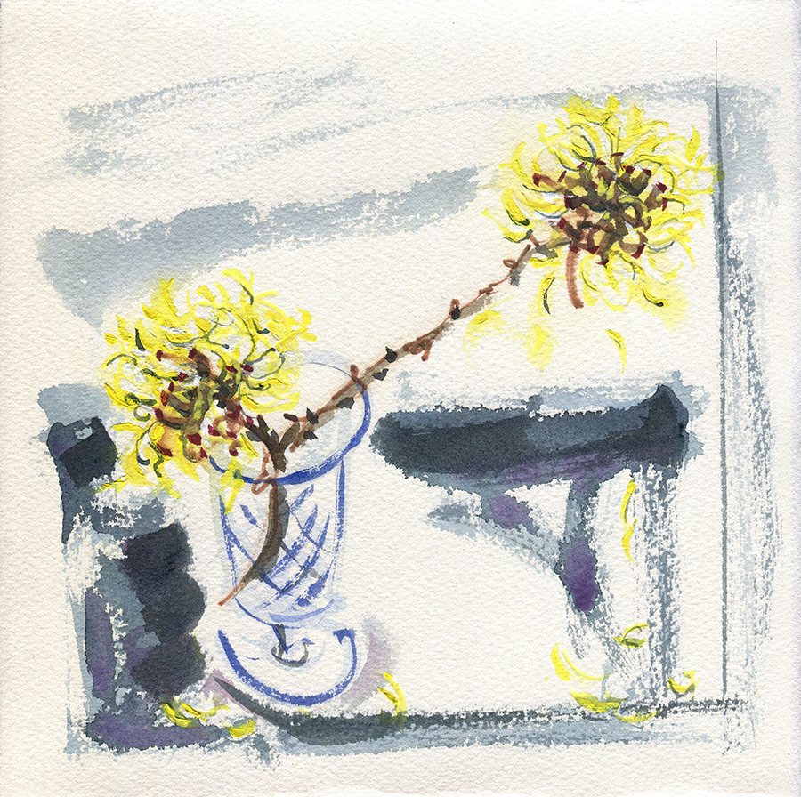 Still Life with Witch Hazel III - watercolour painting by Jo Dunn